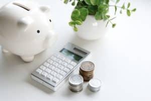 świnka kalkulator pieniądze